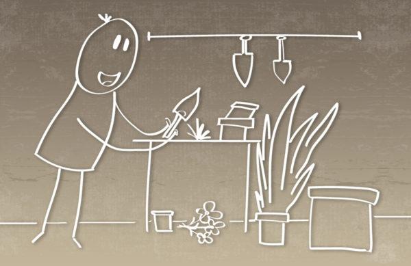 Umtopf- & Einpflanzservice