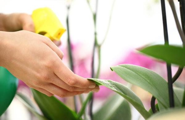 Unser Pflanzenschutz Sortiment