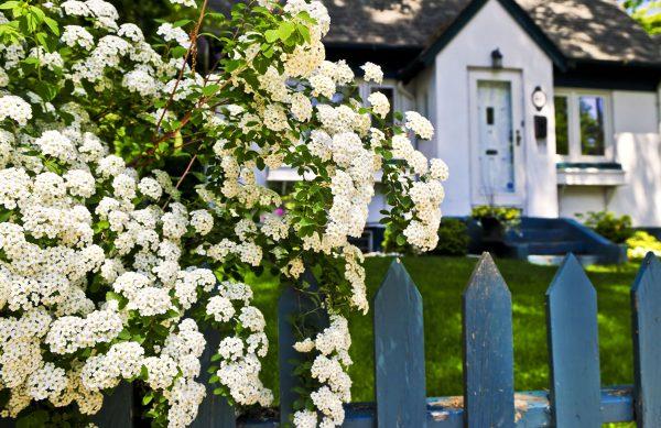 Unsere Events im Juni - Würstle Gartenland